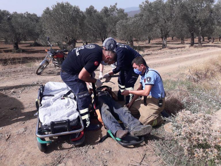 Zeytin ağacına çarpan traktörün sürücüsü yaralandı