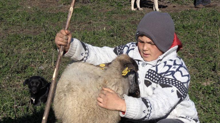 Çoban Şevki. yöresel konuşmasıyla fenomen oldu
