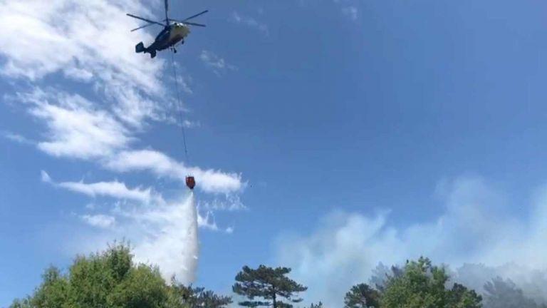 Balya orman yangını kontrol altında