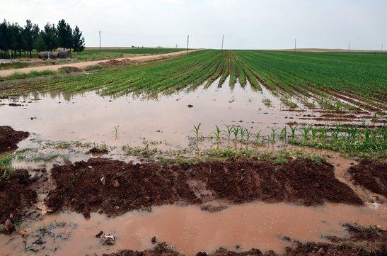 Kuraklık Tarımsal Sulamada Elektrik Faturasını da Artırıyor